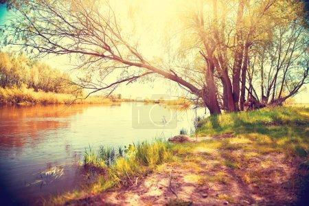 Autumn landscape with a river.