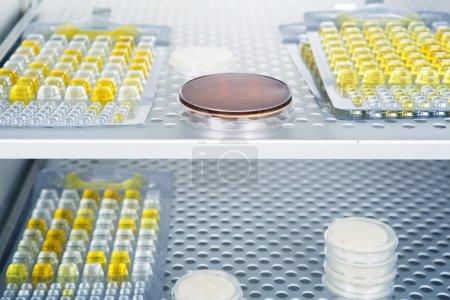 Petri dishes autoclave for sterilising inside.