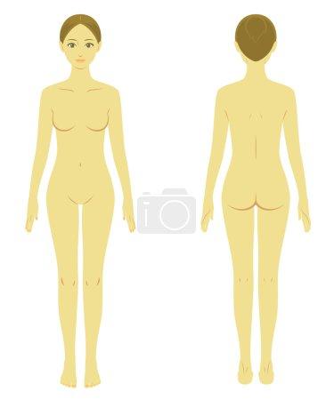 Woman body model naked