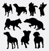 Dog pet animal 2 silhouette