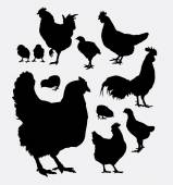 Chicken rooster hen animal silhouettes