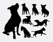 Pitbull bulldog terrier dog animal silhouettes