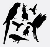 Parrot and hummingbird silhouettes