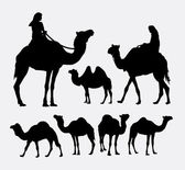 Camel animal silhouettes Good use for symbol logo web icon game element mascot or any design you want Easy to use