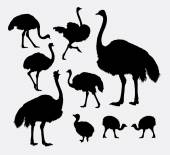 Ostrich poultry animal silhouettes
