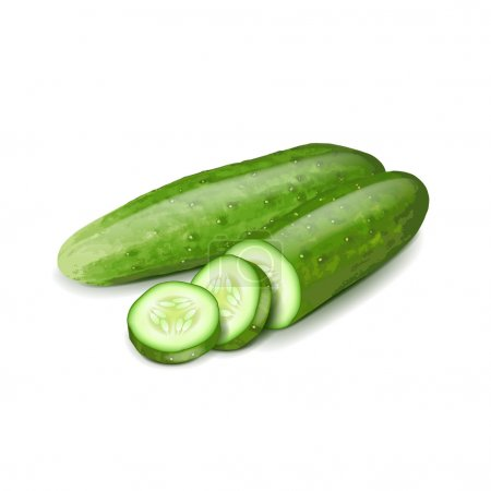 Cucumber and slice isolated on white vector