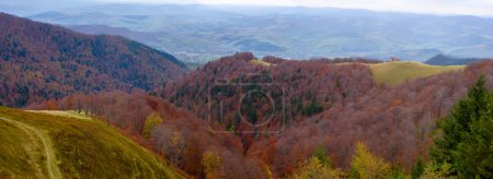 Panoramic views of the beautiful landscape in Carpathian mountains