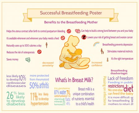 Successful Breastfeeding Poster. Maternity Infographic Template.