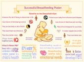 Successful Breastfeeding Poster. Benefits to the Breastfed Infan