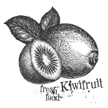 Photo pour Fruits frais sur fond blanc. illustration - image libre de droit