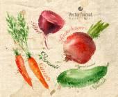 Zelenina. vektorový formát