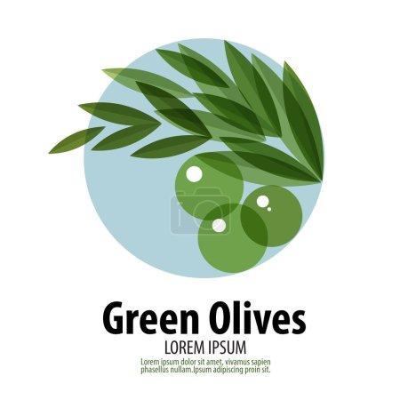 Olives de vecteur modèle de conception de logo. icône de récolte ou de la nourriture