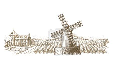 vineyard vector logo design template. farm or bountiful harvest icon.