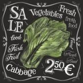 Ripe cabbage logo design template