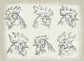 collection of hand drawn chicken vector illustration