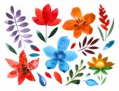set of handpainted watercolor vector flowers and leaves floral decorative elements