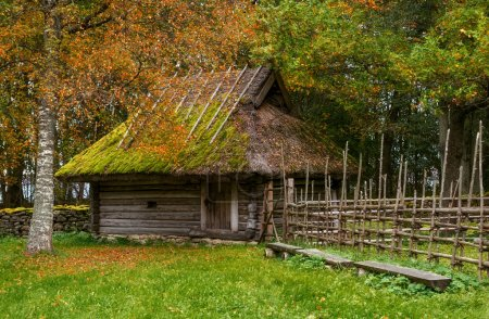 Patio Estonian farm