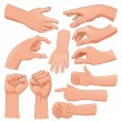 Set of several hands. Cartoon and vector isolated ...
