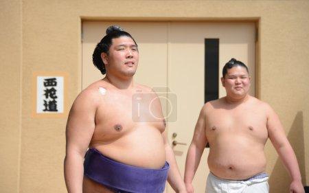Unidentified Sumo wrestlers