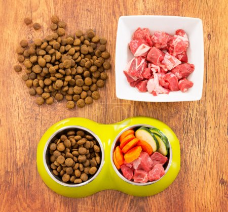Photo for Natural food in a bowl as opposite of dry dog'd food - Royalty Free Image