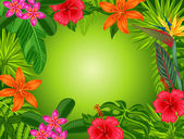 Background with stylized tropical plants leaves and flowers Image for advertising booklets banners flayers cards