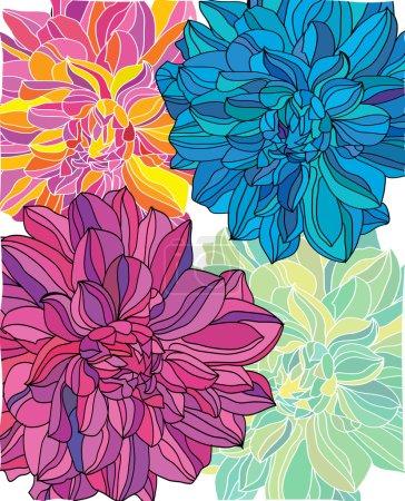 Photo pour Pivoines colorées brillantes de couleurs magnifiques sur fond blanc - image libre de droit