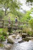 Hikers walking on footbridge in forest