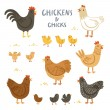 Chickens and chicks illustration set...