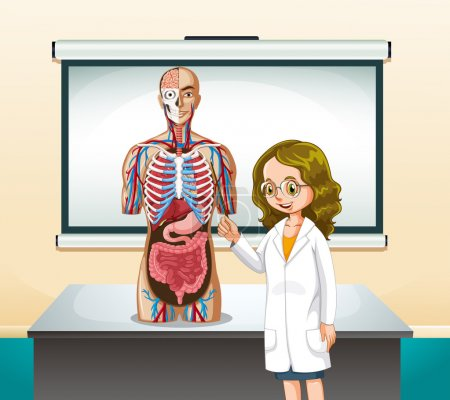 Doctor and human model in classroom