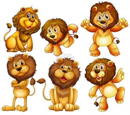 Illustration for Illustration of lion set - Royalty Free Image