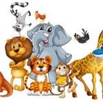 Illustration of many animals standing...
