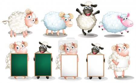Illustration for Illustration of many sheeps with different poses - Royalty Free Image