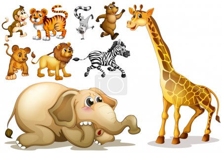 Illustration for Illustration of a set of many animals - Royalty Free Image
