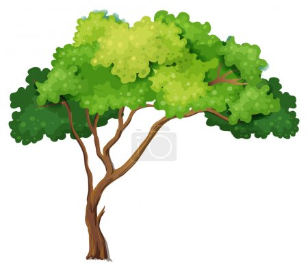 Illustration for Illustration of a close up tree - Royalty Free Image