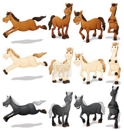 Illustration pour Illustration d'un ensemble de chevaux - image libre de droit