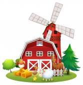 Animals and farm