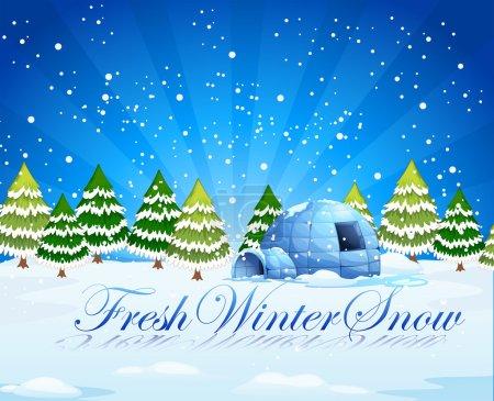 A fresh winter snow