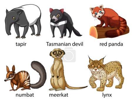 Illustration pour Illustration de six types d'animaux différents - image libre de droit