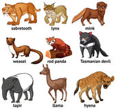 Different types of rare animal
