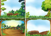 Four scenes of forest at daytime