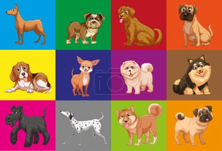 Dogs in square