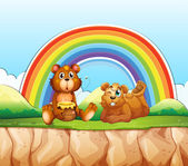 Medvědi a rainbow