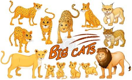 Illustration pour Différents types d'illustration de lions et de tigres - image libre de droit
