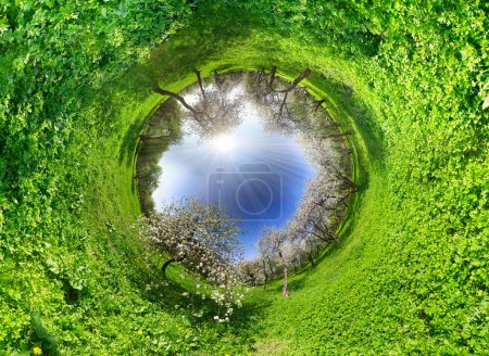 Photo for Panoramic image looks like planet. Ecology and space concept - Royalty Free Image