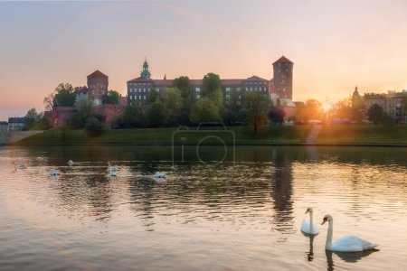Medieval Wawel castle and white swans