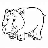Cute hippopotamus