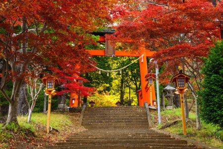 Torii gate to chureito pagoda in autumn, Fujiyoshida, Japan