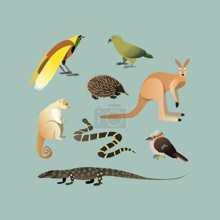 Vector Set Of Different Australian Animals. Animal...
