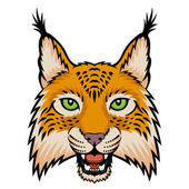 A lynx head logo This is vector illustration ideal for a mascot and tattoo or T-shirt graphic