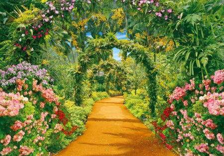 Flower alley and liana arches